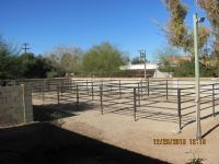 Fencing, Arenas, Pens and Turn outs