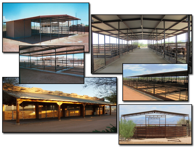 Arizona's Premier Custom Horse Facility Fabricator